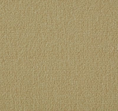 Exquisite Velvet Madeira Carpet 2