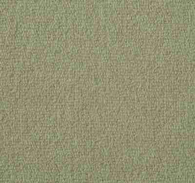 Exquisite Velvet Marshmallow Carpet 6