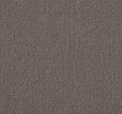 Exquisite Velvet Ormolu Carpet 8