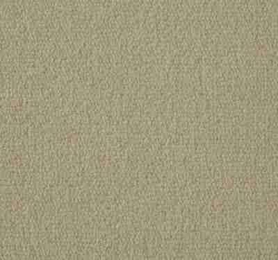 Exquisite Velvet Sandstone Carpet 6