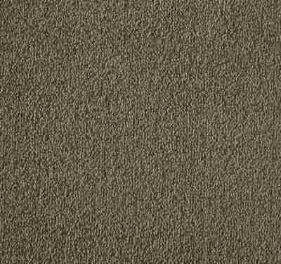 Silken Velvet Aniseed Carpet 13