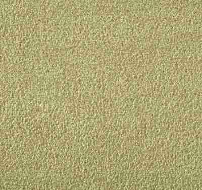 Silken Velvet Camel Carpet 8