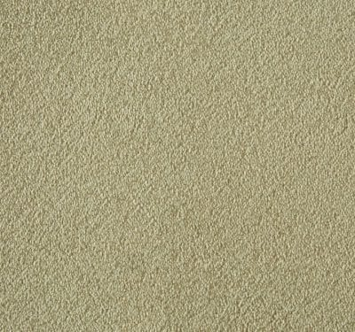 Silken Velvet Cashmere Carpet 3