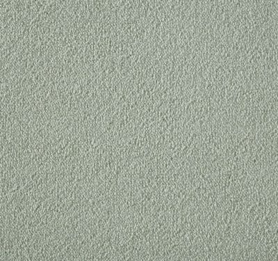 Silken Velvet Chiffon Carpet 6