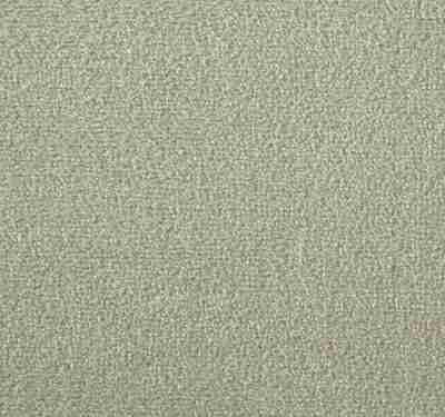 Silken Velvet Ecru Carpet 7
