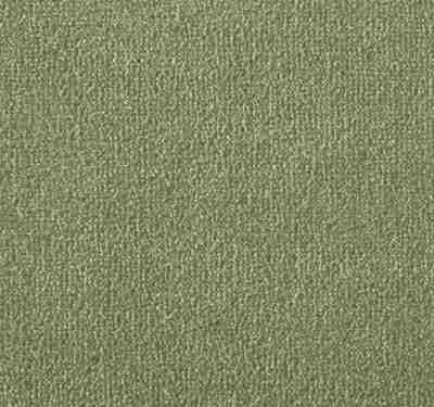 Silken Velvet Olivine Carpet 13