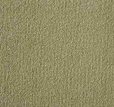 Silken Velvet Simplicity Carpet 11