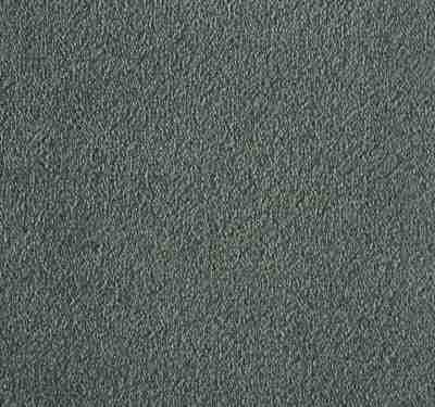 Silken Velvet Titanium Carpet 9