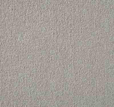 Silken Velvet Turtle Dove Carpet 5