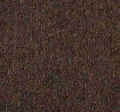 Ultima Twist Cinnamon Carpet 1
