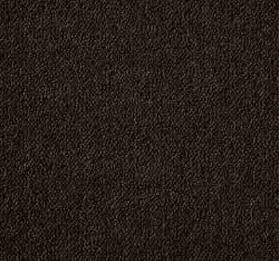 Ultima Twist Conker Carpet 10