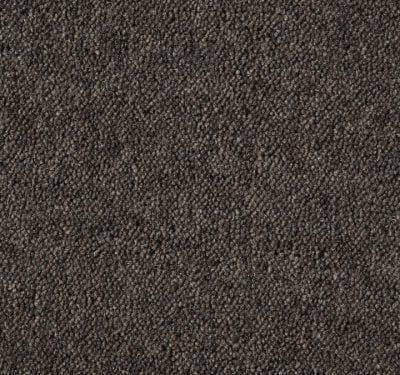 Ultima Twist Fossil Carpet 1