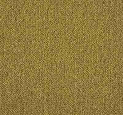 Ultima Twist Tuscan Harvest Carpet 3