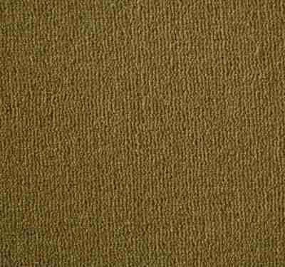 Westend Velvet Amber Carpet 5