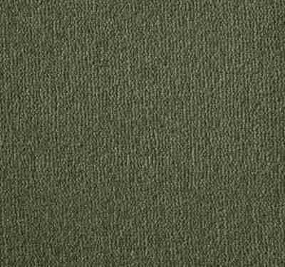 Westend Velvet Asparagus Carpet 12