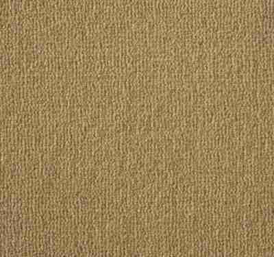 Westend Velvet Butternut Carpet 3