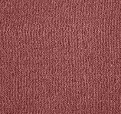 Westend Velvet Campion Carpet 5