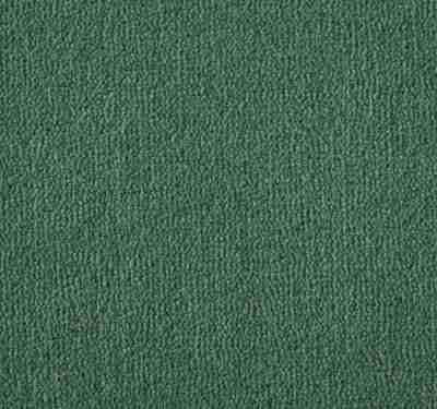 Westend Velvet Cedar Carpet 6