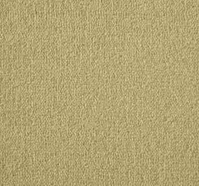 Westend Velvet Cider Carpet 1
