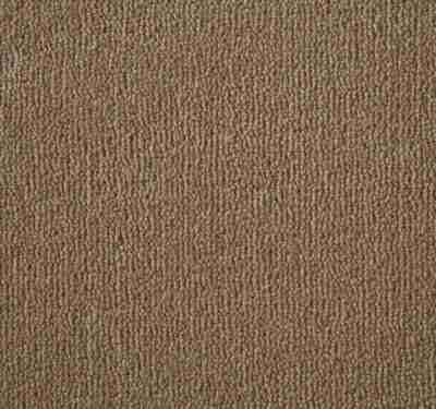 Westend Velvet Fawn Carpet 4