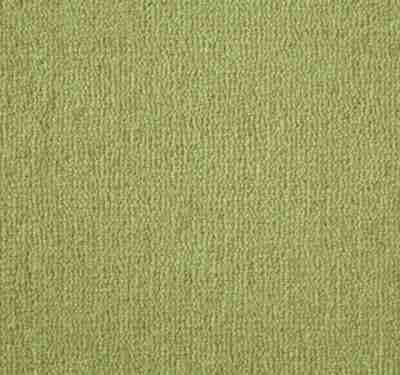Westend Velvet Jasmine Carpet 4