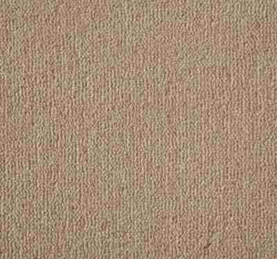 Westend Velvet Mango Carpet 2