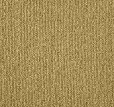 Westend Velvet Medeira Carpet 9