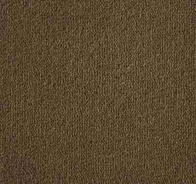 Westend Velvet Moccasin Carpet 3