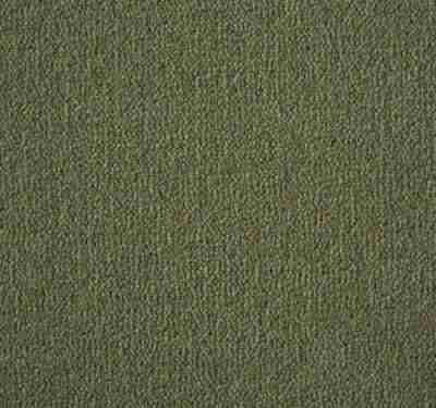 Westend Velvet Moss Carpet 8
