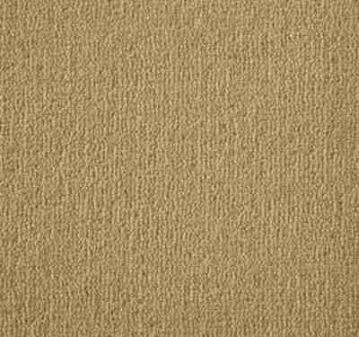 Westend Velvet Panama Carpet 10