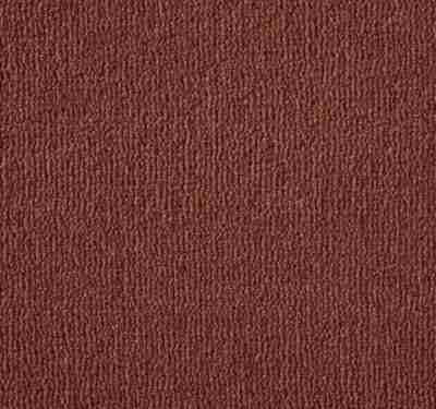 Westend Velvet Pimento Carpet 8
