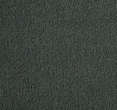 Westend Velvet Platinum Carpet 3