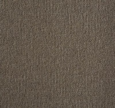 Westend Velvet Praline Carpet 6