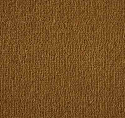 Westend Velvet Pumpkin Carpet 11