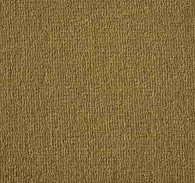 Westend Velvet Spring Carpet 2