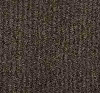 Westend Velvet Suede Carpet 7