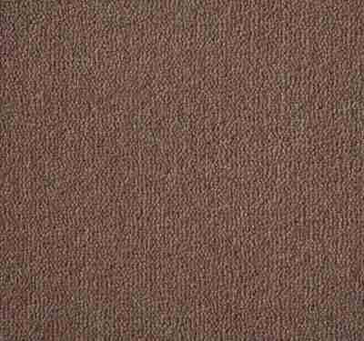 Westend Velvet Taupe Carpet 10