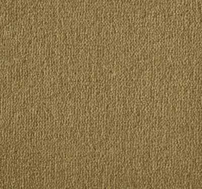 Westend Velvet Toast Carpet 4
