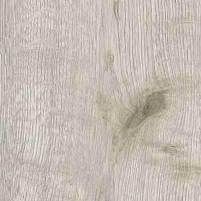 Fulda oak 12