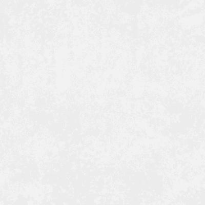 Nimes white 8