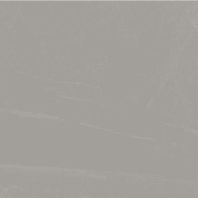 Grey Sien 6