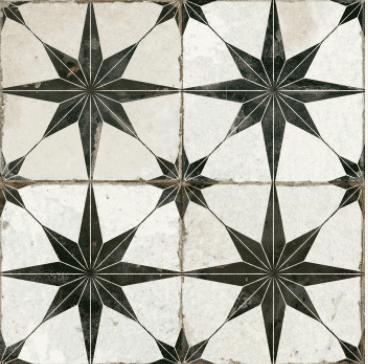 Star Negra 4